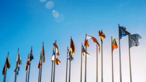 EU-rapport om system för att förhindra farliga produkter 3