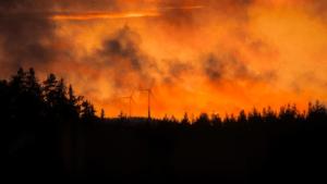 Nu ska smart teknik upptäcka skogsbränder 2